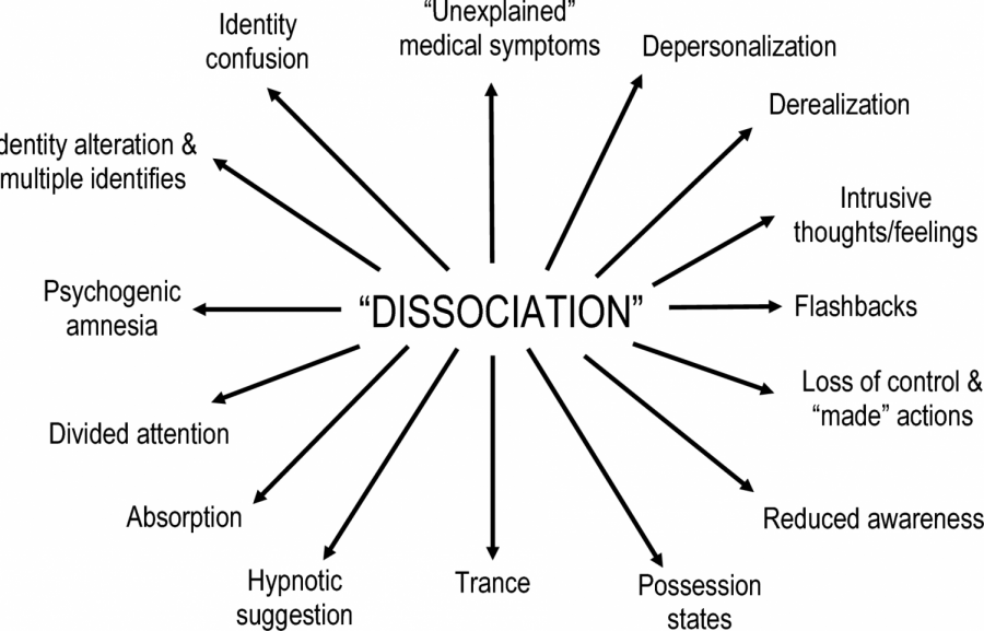 The Brain And Dissociation